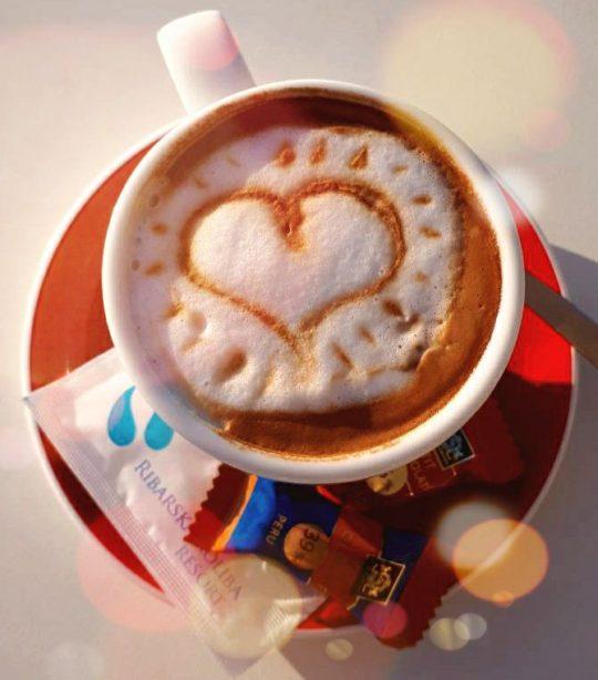 Vertigo cafe and lounge bar kava