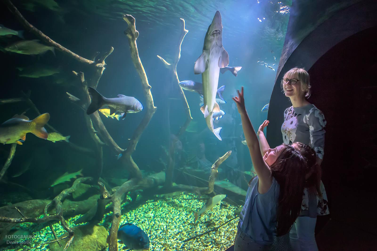 Aquatica Aquarium